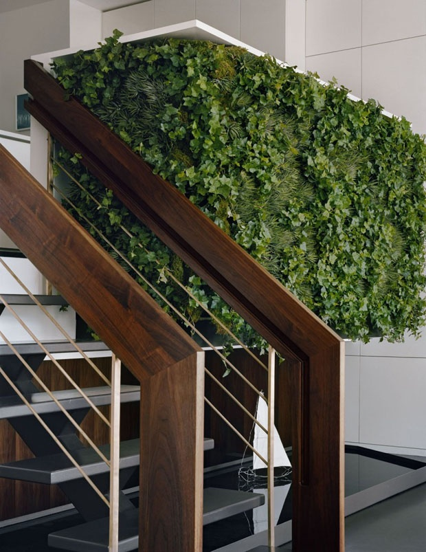 green wall and timber stairs