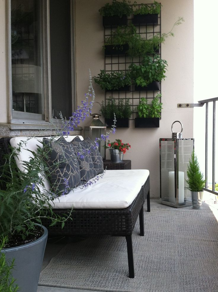 Vertical Herb Garden on a Small Balcony
