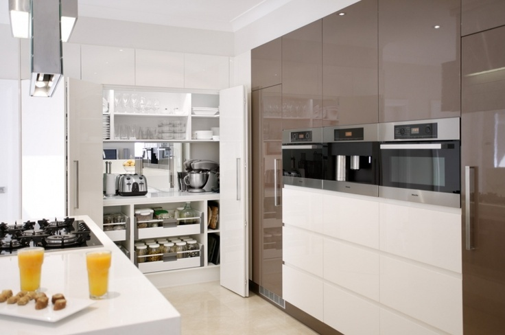 Modern Contemporary Butlers pantry