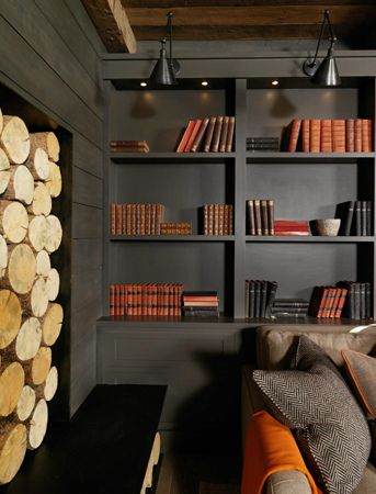 18a dark book shelves